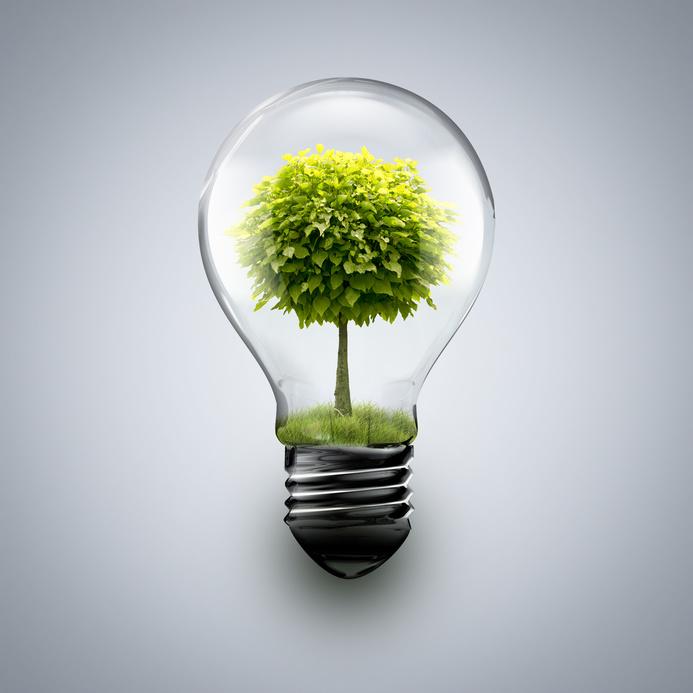 ecologie energie renouvelable